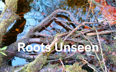 Roots Unseen