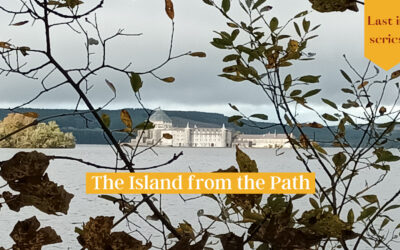 The Island from the Path: Last in series Pause and Ponder Reflection along the Lough Derg Pilgrim Path
